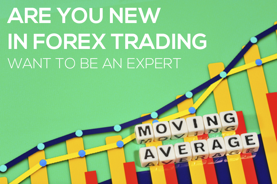 Are You New In Forex Trading