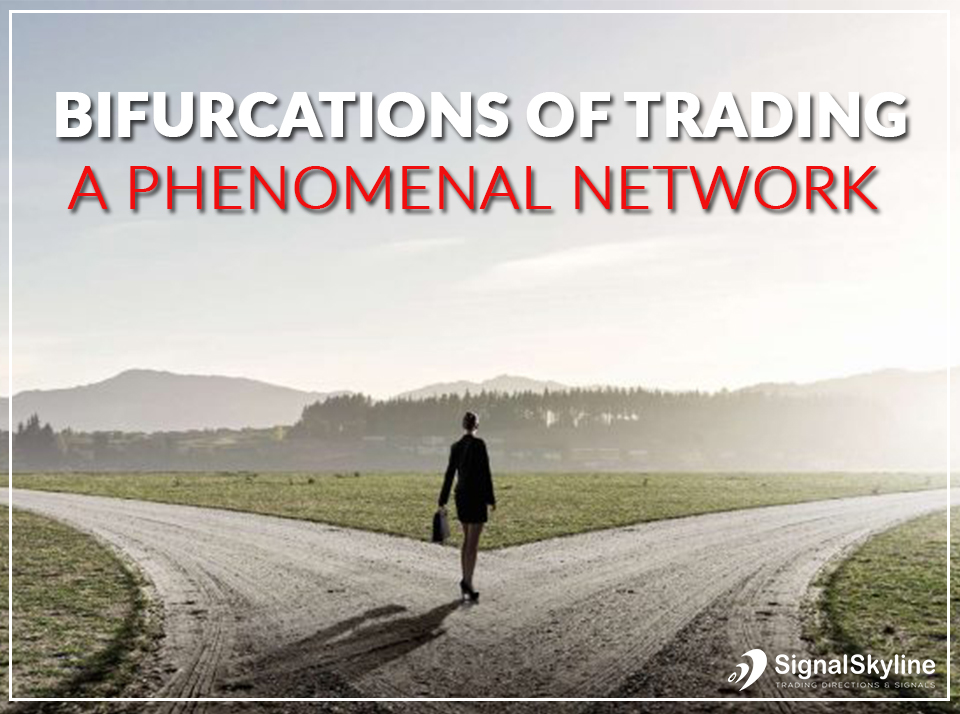 Bifurcations-Of-Trading---A-Phenomenal-Network